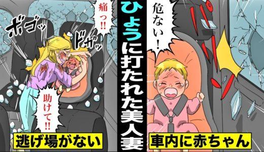 【漫画】無数の巨大ひょうに打たれ続けた美人妻。赤ちゃんを守るために全身ボコボコになった・・・
